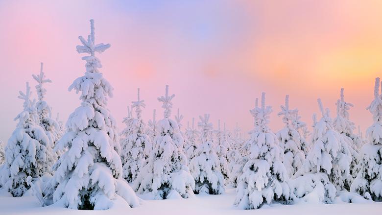Winter Snow Desktop Wallpapers HD 49817