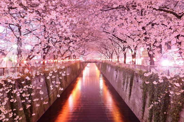 Japanese Desktop Wallpapers