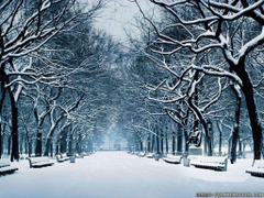 Winter Season Wallpapers Crazy Frankenstein Desktop Backgrounds