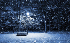 Snow Nigth Winter Season Wallpapers
