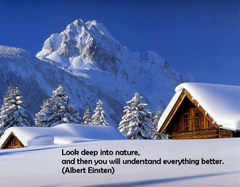 Nature s Seasons image Winter HD wallpapers and backgrounds photos