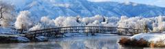 Winter Scenes for Desktop Winter Season Winter Scenery Hd