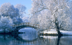 Winter Scenery Wallpapers