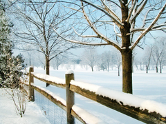 Country Winter Wallpapers on WallpaperDog