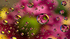 Colorful Water Drops Wallpapers Hd teahub io