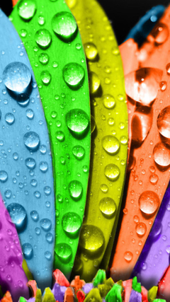 Colorful Macro Water Drops Android Wallpapers