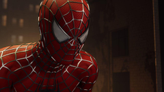 Wallpapers Spider