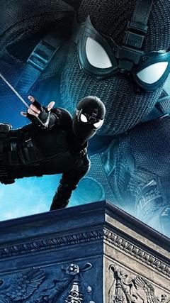 Black Suit Spider