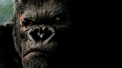Gorilla Wallpapers Image Group
