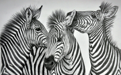 animals desktop image mobile wallpapers three wall murals