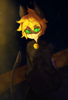 Ladybug and Chat Noir Wallpapers
