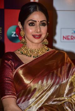 Priyanka Chopra Reacts To Sridevi s Sudden Death I Have No Words