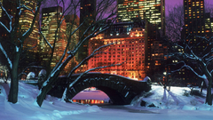 Pix For Winter Central Park Wallpapers