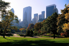 More Central Park wallpapers wallpapers