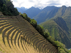 Day Inca Trail to Machu Picchu