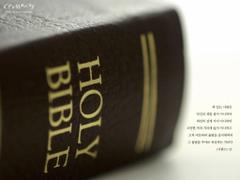scripture bible verse
