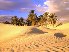 Sahara Largest Desert Wallpapers