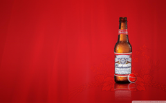 Busch Beer Wallpapers