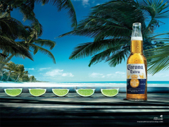 Image For Corona Beer Wallpapers