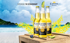 Alcohol Drink Corona Extra Beer Wallpapers For Your PC Computer Drink
