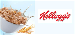 Kellog s Launches Venture Capital For Food Startups