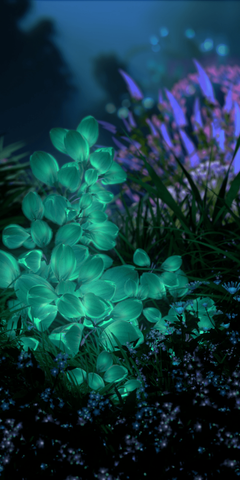 the upcoming Huawei P20 s default wallpapers in full resolution