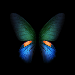 Samsung Galaxy Fold Wallpapers In High Quality