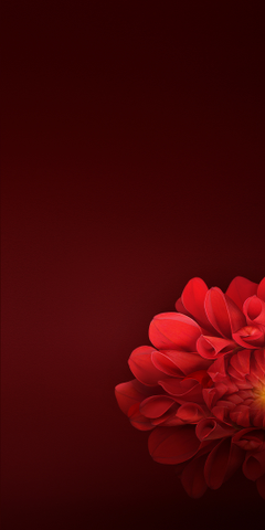 Realme 1 Stock Wallpapers in Full HD Quality