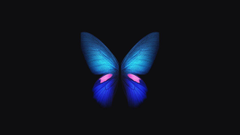 Wallpapers Samsung Galaxy Fold Blue Butterfly Stock 4K Creative