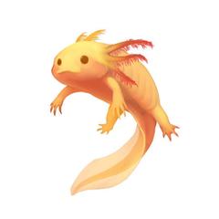 Axolotl Clipart Adorable