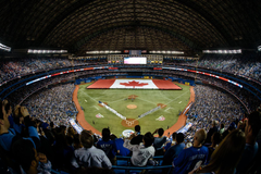 TORONTO BLUE JAYS mlb baseball