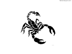 Designs Contour Of Scorpion Tattoo Wallpapers Picture