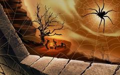 Halloween Spider Net
