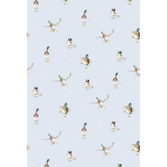 Duck Wallpapers