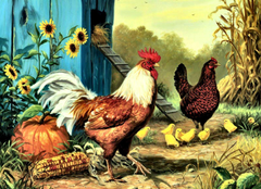 Chickens Painting Wallpapers