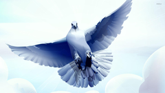 Dove with wings spread wallpapers