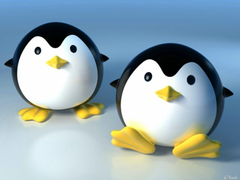 Cute Image Of Penguins