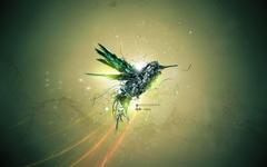 Hummingbird Wallpapers Wallpaperz