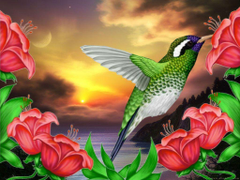 Wallpapers For Hummingbird Wallpapers Pattern