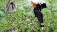 The World According to Hornbill