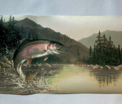 Rainbow Trout Wallpapers