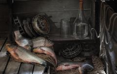 Photo Wallpapers Fish Vodka Carp