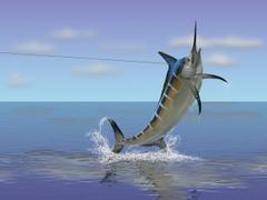 Best 43 Swordfish Backgrounds on HipWallpapers