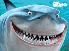 Finding Nemo Bruce the Shark Wallpapers