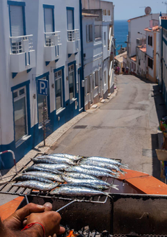 HD wallpaper portugal lagos street fish old street