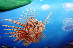 Photo zebrafish Fish Underwater world Animals Painting Art