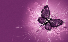 Purple Butterfly Wallpapers