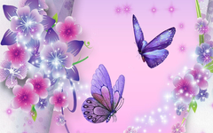 butterfly wallpapers Wallpapers Idol