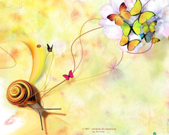 Snail Butterflies Wallpapers Wallpapers