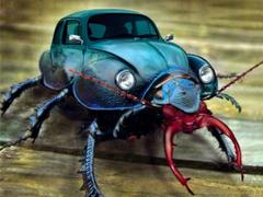 Beetle Bug Wallpapers